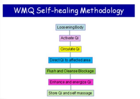 Wellness Medical Qigong Self Healing Methodology
